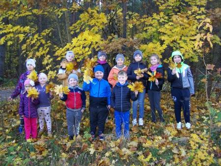 Cztery pory roku w lesie - powitanie jesieni